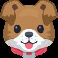 dog-face_1f436-1
